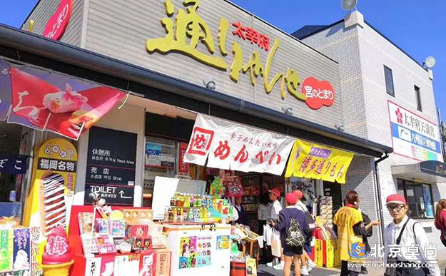 世界超模豪华游轮之旅日本长崎福冈游学